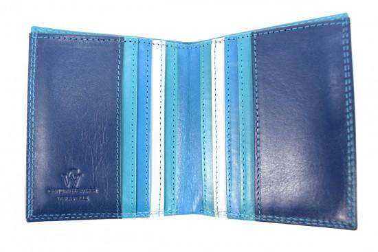 portafoglio piccolo multicolore blu