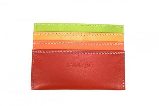 porta carte di credito multicolore